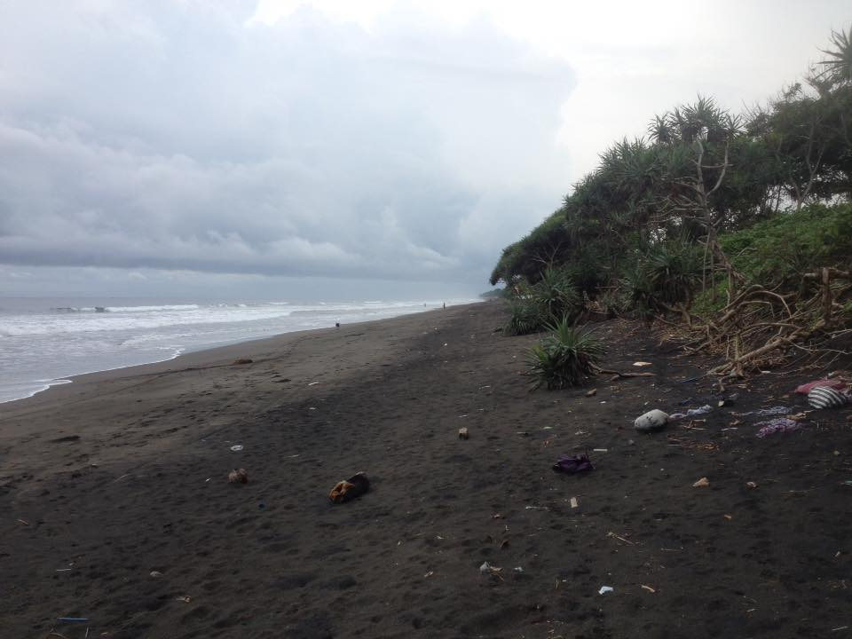 Land for sale in Yeh Kuning, Bali.